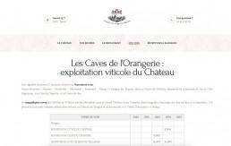 Design de la page des Caves du Château