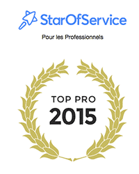 Prix meilleur designer logos 2015 starofservice