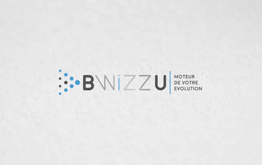 mock up logo entreprise expert IT, audit